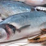 10 bonnes raisons d'ajouter le poisson et des fruits de mer à votre alimentation